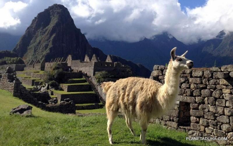 Таинственное исчезновение людей из Мачу-Пикчу