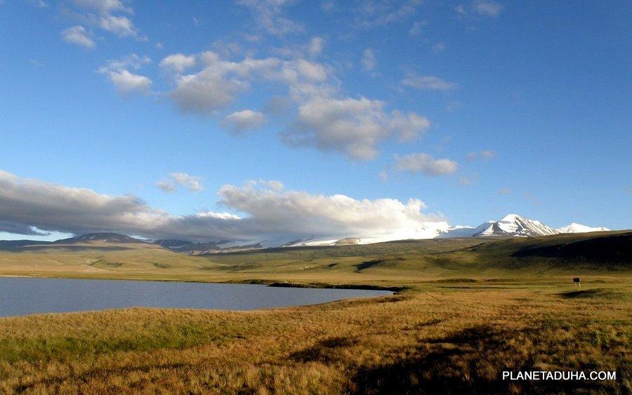 Высокогорное плато Укок - Горный Алтай