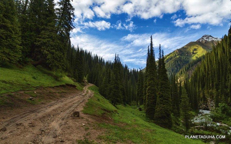 Дорога на курорт Алтын-Арашан
