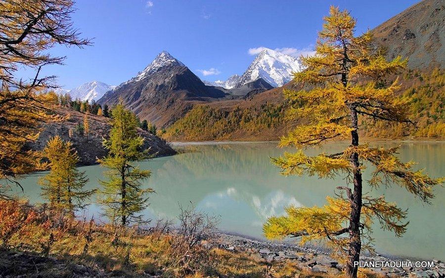 Золотая осень на Манжерокском озере - Сиверные горы