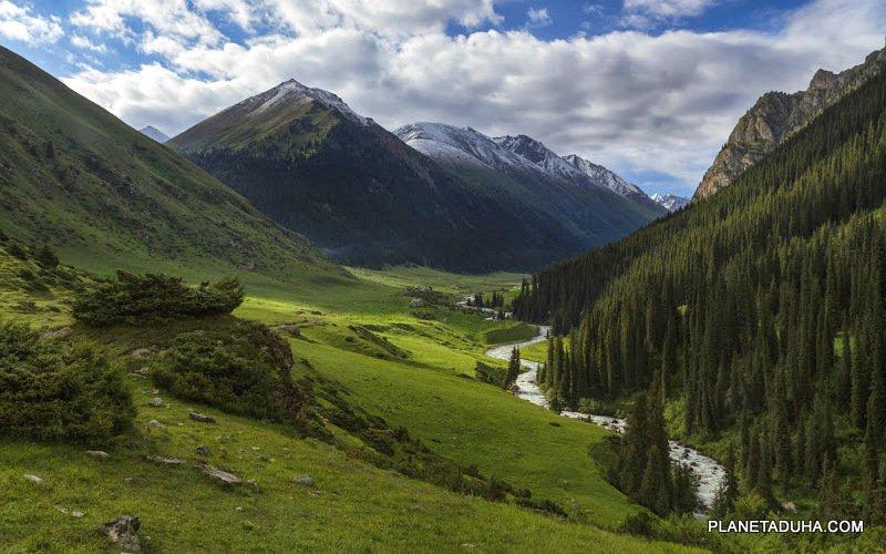Зеленая долина реки Арашан (р-он курорта Алтын-Арашан)
