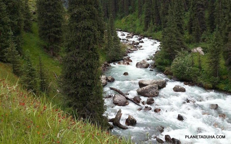 Благословенные воды реки Арашан. Пока течет Арашан, здесь будет жизнь!
